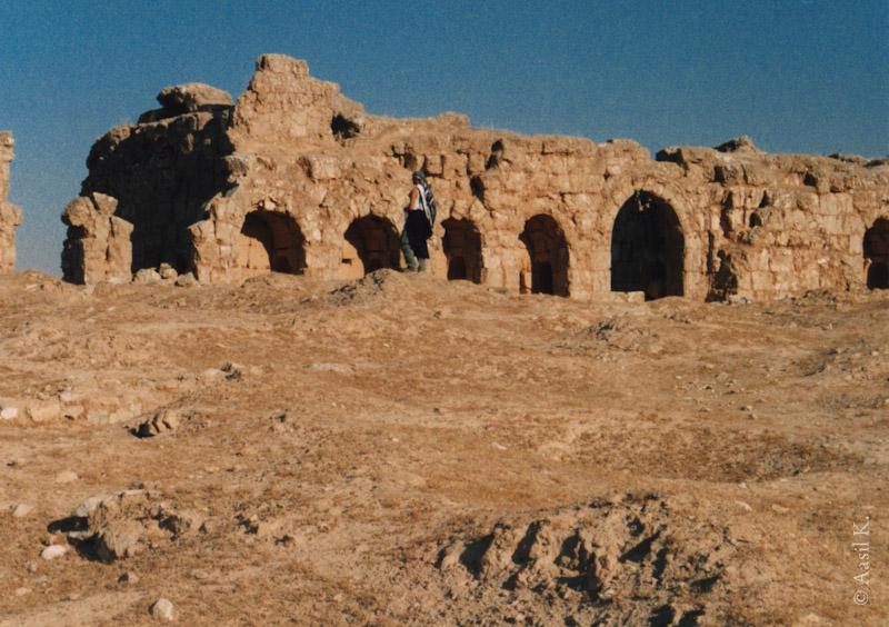 43_rasafa03_syria