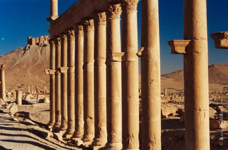 55_tadmor3_syria
